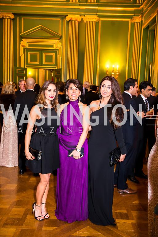 Sixth Annual Nowruz Commission Gala - washingtonlife
