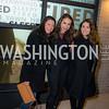 Lisa Bonos, Sarah Avkin, Abigail Hauslohner, Washington Project on the Arts, Opening at Atlantic Plumbing, November 14, 2015, photo by Ben Droz.