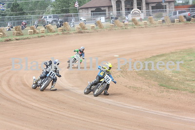 2014 White Platers Vintage Flat Track