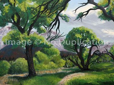 1955 Trees oilsB