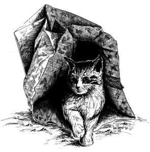 "1983: ""Cat Out of the Bag"". Created during taking drawing classes, mid-1980's, at UW-Superior, WI."