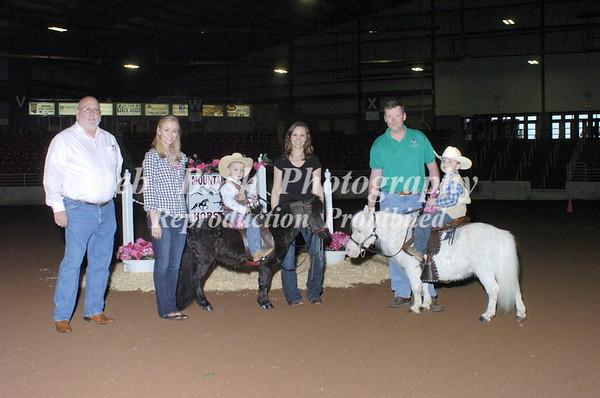 MOUNTAIN STATES HORSE SHOW WHITE PINE, TN