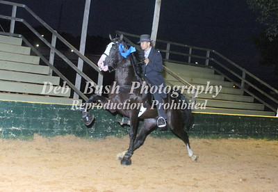 CLASS 20  PONIES YOUTH 17 & UNDER SPECIALTY