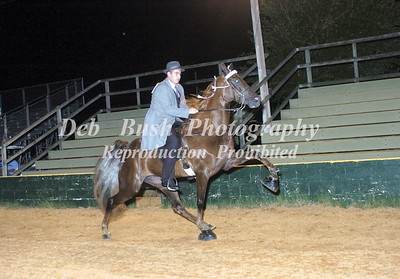 CLASS 28  AMATEUR NOVICE RIDER SPECIALTY