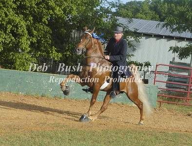 CLASS 7  ETWHA MEMBERS ONLY AMATEUR SPECIALTY