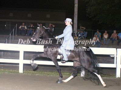 CLASS 24  YOUTH WALKING PONY SPECIALTY 17 & UNDER