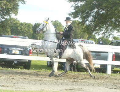 CLASS 4 AMATEUR OWNED & TRAINED SPEC