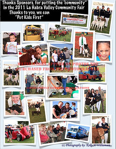 2011 LHVCF Poster - (C) Photography by: Kelly H Williamson