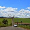 Nicols Chicken Farm Wind Turbine