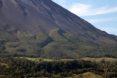 The side of the volcano showing the point of delineation between hardened lava and foliage.