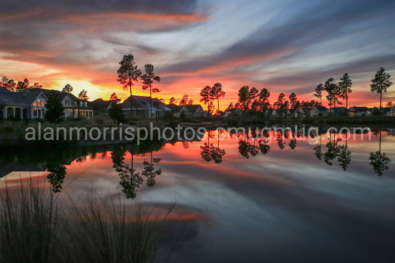 Sunset behind the Hammocks