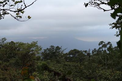 Cloud Forest Excursion