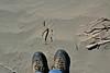Mesquite Flats Sand Dunes, Death Valley NP