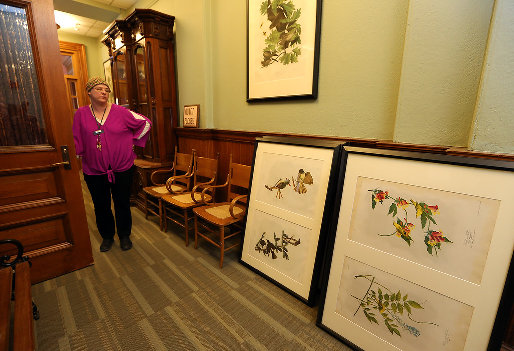 . Aftermath of flooding at Pollard Memorial Library, caused by burst pipes above the Reference Room. Library director Victoria Woodley, with some of the library\'s collection of circa 1860s-1870s original Audubon lithographs, which fortunately were not damaged. They were taken down because they were due to be switched out anyway. There are about 100, and they have room to display about 33 at a time. (SUN/Julia Malakie)