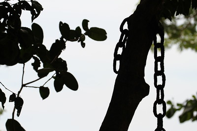 Chain and silhouette