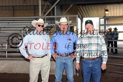 Robstown2015-Steer Roping plus County roping