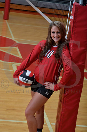 Rock Hill Volleyball group pictures 2013