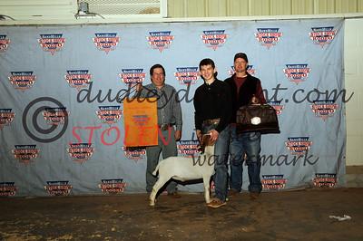 Odessa2015-1F Goats-020 sterlingSCOTT