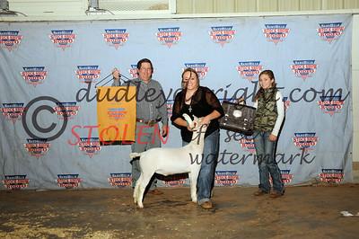 Odessa 2015 - Friday Goat Show