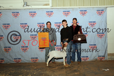 Odessa2015-1F Goats-019 sterlingSCOTT