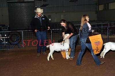Odessa2015-1F Goats-011 giaGARLAND