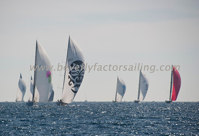 Voiles de St  Tropez 2013 - Dqy 2_2540