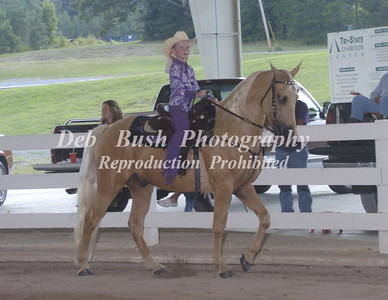 2014 TENNESSEE STATE NATIONAL RACKING HORSE  CHAMPIONSHIP-CLEVELAND, TN  AUG 16