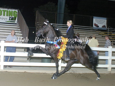 CLASS 41  ADULT/YOUTH PONY CHAMPIONSHIP