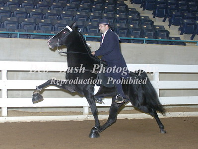 CLASS 21  AMATEUR OWNED & TRAINED SPECIALTY