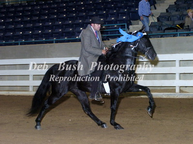 CLASS 22 LITE SHOD FOUR YRS & UNDER SPECIALTY