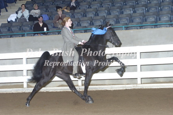CLASS 49  4 YR OLD AMATEUR MARES & GELDINGS