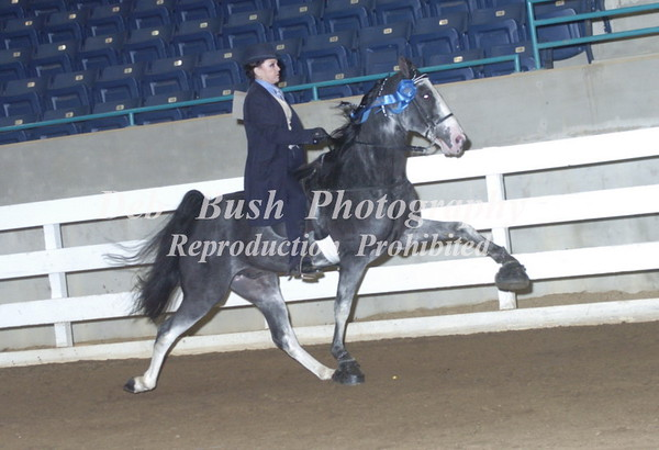 CLASS 51 AM PONY 18 & OVER SPECIALTY