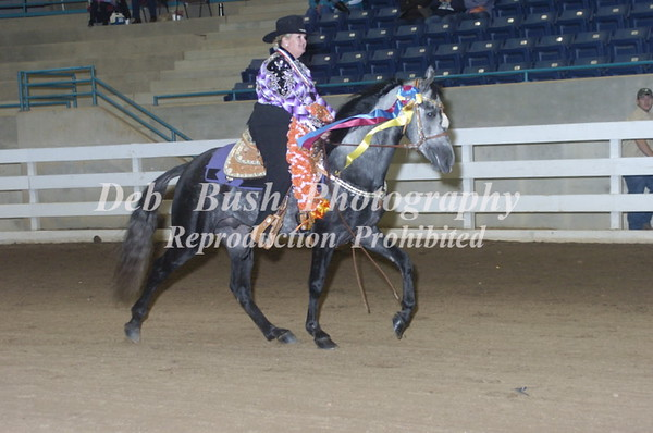 CLASS 61  COUNTRY PLEASURE CHAMPIONSHIP