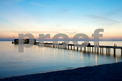 Florida #8