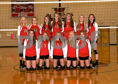 Cheatham Middle Volleyball Team Pictures