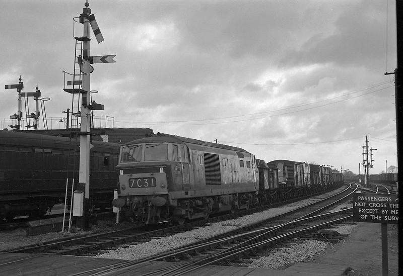 D7099, down freight, Taunton, April 14, 1964.