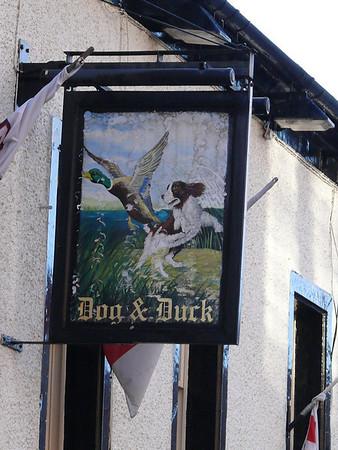 Pub Sign - Dog & Duck, Sandgate, Penrith 110105