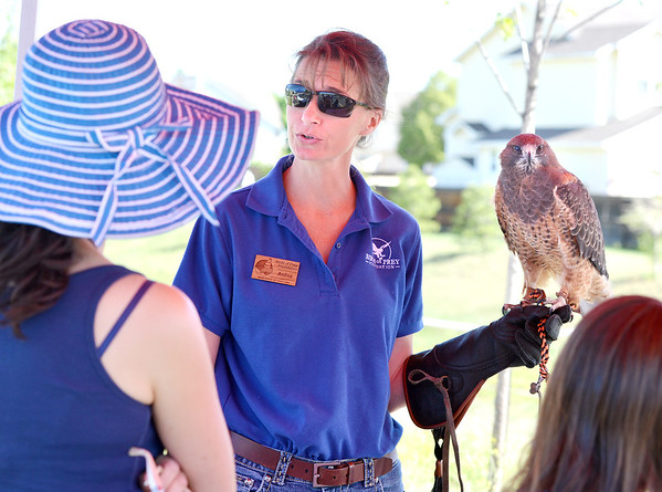Andrea Lutz with Birds of Prey Foundation holds Sierra a Swainson's hawk during the 11th Annual Trail Adventure in the Westlake neighborhood on Saturday.<br /> June 2, 2012 <br /> staff photo/ David R. Jennings