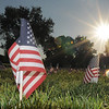 Flags at sunrise of the mini-healing field before the 9/11 Commemorative Ceremony at the 9/11 Memorial in Community Park on Sunday.<br /> September 11, 2011<br /> staff photo/ David R. Jennings