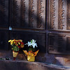 Flowers were left at the New York part of the 9/11 Memorialbefore the 9/11 Commemorative Ceremony at Community Park on Sunday.<br /> September 11, 2011<br /> staff photo/ David R. Jennings