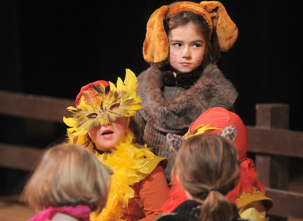Dorothy Bennett, 8, center, gathers farm animals with the roosters Audrey Floyd, 7, and Leonard Datillo, 5, during the Backstory Theatre Academy's Make Believe and Beyond class production of The Bremen Town Musicians at the Audi on Tuesday.<br /> <br /> March 1, 2011<br /> staff photo/David R. Jennings