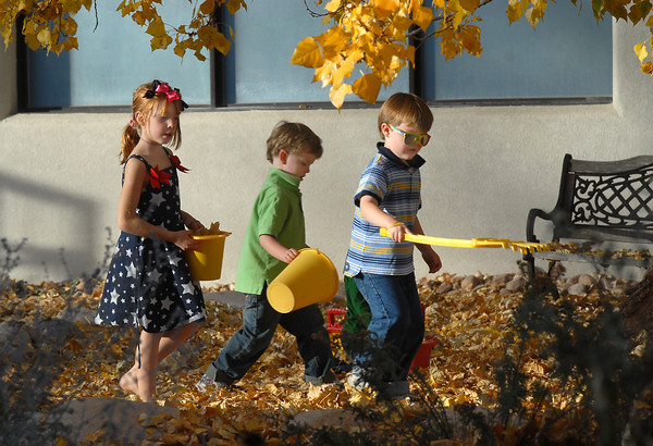 Amelia Walsh, 5 1/2, left, Brandon Hughes, 5, and his brother Zachary, 6, hunt for leaves to gather into a pile during the Bal Swan Children's Center Pint-Sized Ball on Saturday.<br /> November 6, 2010<br /> staff photo/David R. Jennings