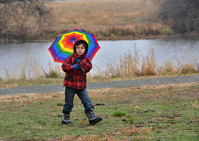 Rajan Keithley, 5, braves the rain and sleet with his rainbow umbrella during the opening ceremony for the Metzger Farm Open Space on Saturday. November 10, 2012 staff photo/ David R. Jennings