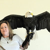 Heidi Bucknam, executive director of the Birds of Prey foundation, with Adam a Bald Eagle gives an educational talk about Bald Eagles during the presentation for the Broomfield Open Space Foundation at the Broomfield Community Center on Saturday.<br /> September 24, 2011<br /> staff photo/ David R. Jennings