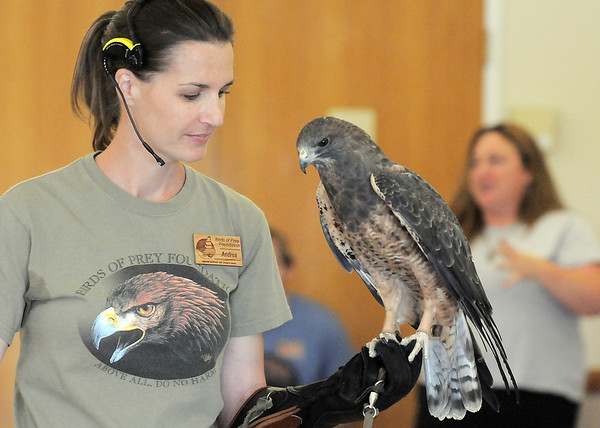 Andrea Lutz talks about Sierra, a Swainson's Hawk, during the Birds of Prey Foundation presentation for the Broomfield Open Space Foundation at the Broomfield Community Center on Saturday.<br /> September 24, 2011<br /> staff photo/ David R. Jennings