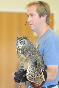 Jon Lutz talks about Frosty, a Great Horned Owl,  during the  Birds of Prey Foundation presentation for the Broomfield Open Space Foundation at the Broomfield Community Center on Saturday. September 24, 2011 staff photo/ David R. Jennings