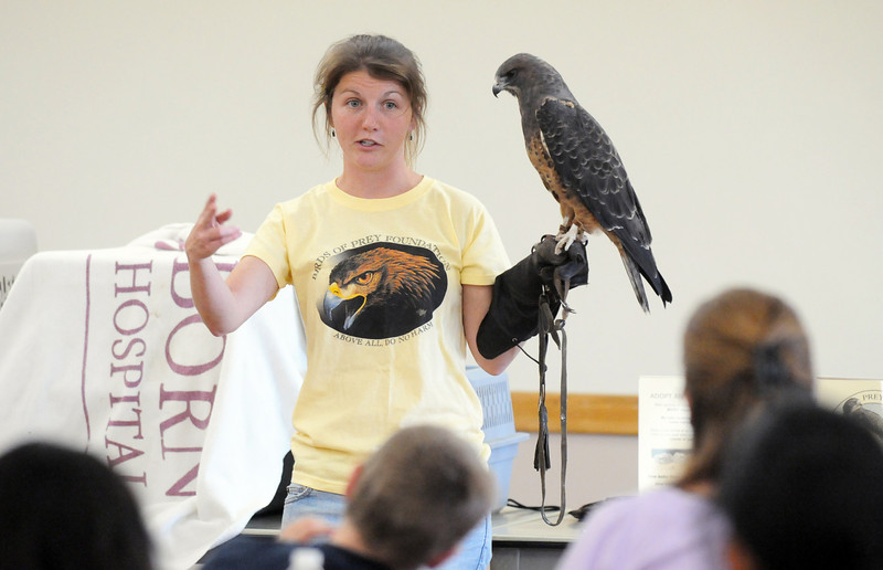 Rachel Mansfield, assistant director of the Broomfield based Birds of Prey Foundation, talks about Sierra, a dark morph Swainson's  Hawk , during the presentation at the Broomfield Community Center on Saturday.<br /> <br /> September 25, 2010<br /> staff photo/David R. Jennings