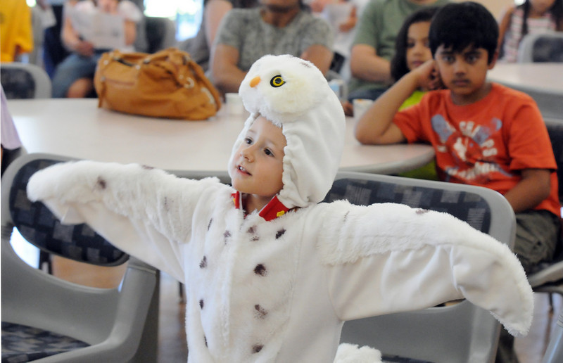 Aiden Wiese, 4, dressed as a snowy owl for the Birds of Prey Foundation presentation at the Broomfield Community Center on Saturday.<br /> <br /> September 25, 2010<br /> staff photo/David R. Jennings