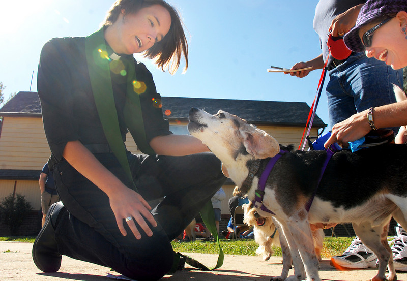 Rev. Kim Seidman, Holy Comforter Episcopal Church, blesses a howling Sebastian, owned by Michelle and Charlie Villarreal, during the blessing of the animals on the front lawn of the church on Saturday.<br /> <br /> October 2, 2010<br /> staff photo/David R. Jennings