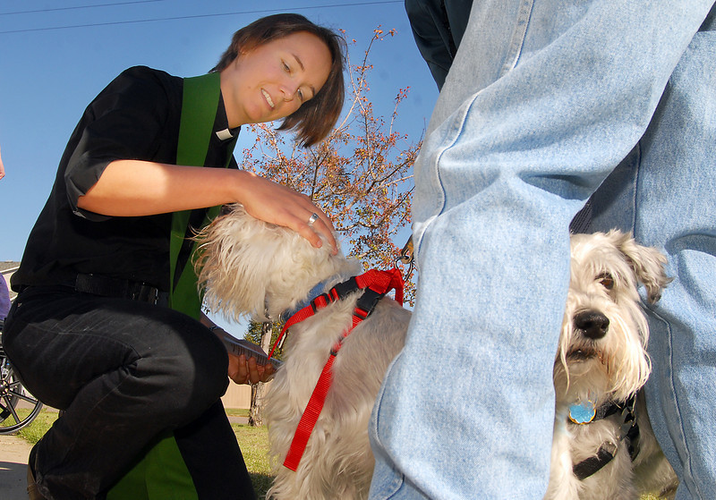 Rev. Kim Seidman, Holy Comforter Episcopal Church, blesses Loki while Toby from between the legs of owner John Peterson during the blessing of the animals on the front lawn of the church on Saturday.<br /> <br /> October 2, 2010<br /> staff photo/David R. Jennings